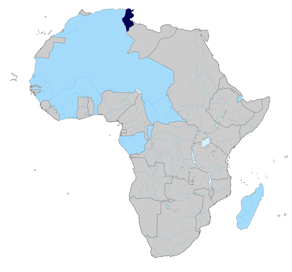 colonización de África por Francia