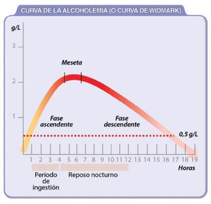 curva de widmark dgt