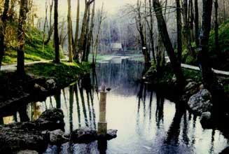 cuenca del río Arga