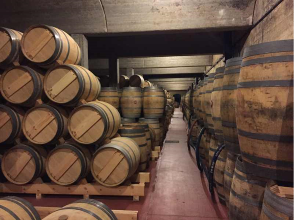 odegas Muga, en Haro, La Rioja