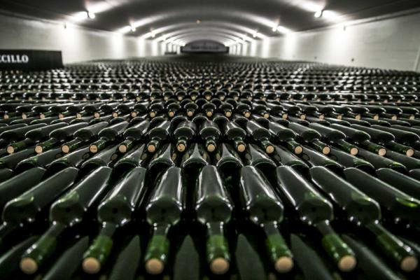 botelleros de Bodegas Montecillo