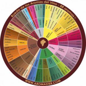rueda de los aromas del vino