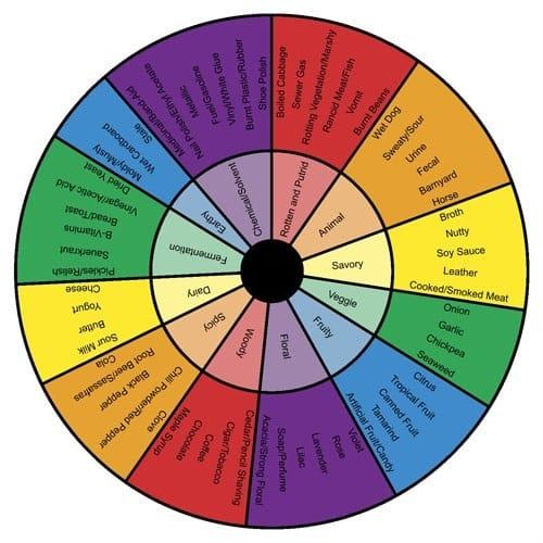 rueda de los aromas
