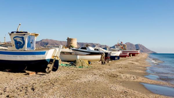 barcas de pesca de bajura
